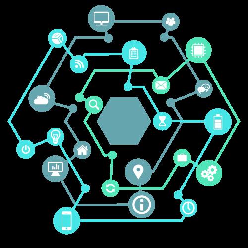 Single-Network